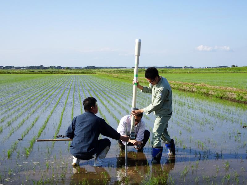 農業向けITセンサーMIHARAS(ミハラス) 実証実験