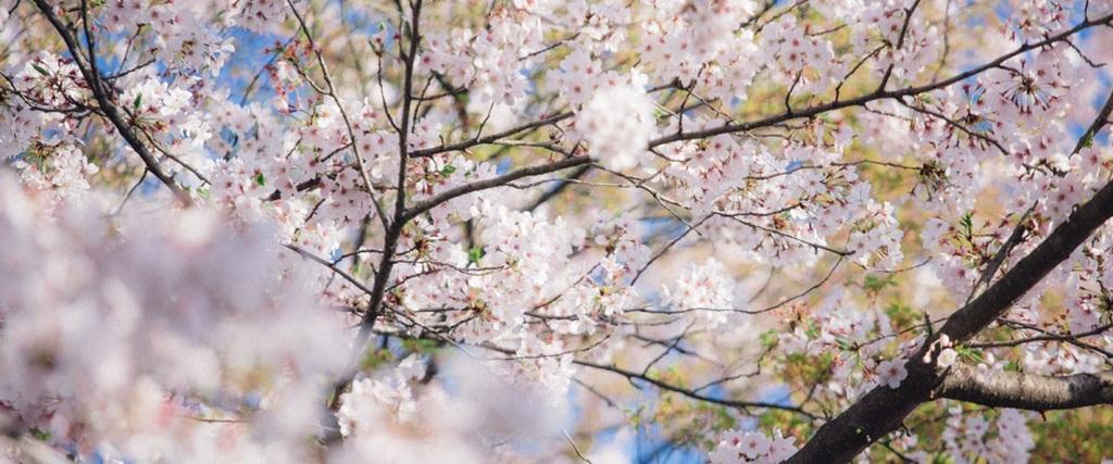 春の補聴器新生活応援フェア