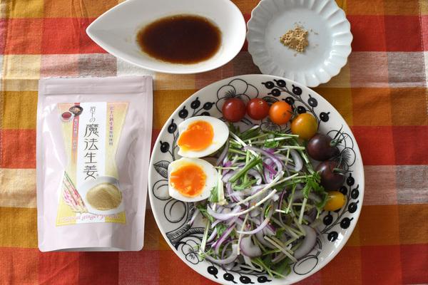 岩下の魔法生姜 サラダ