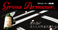 グロスアーマーイメージ