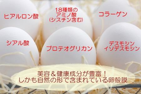 卵殻膜 美容成分